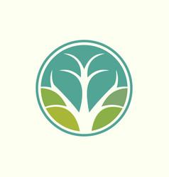 tree branch circle environment abstract logo vector image