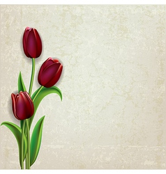 abstract floral grunge background with red tulips vector image vector image