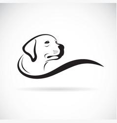 dog head designlabrador retriever on white vector image vector image