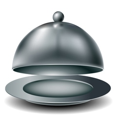 Metal food tray vector image