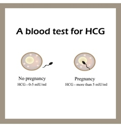 A blood test for hCG The blood test for pregnancy vector image