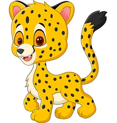 Cute baby cheetah walking isolated vector