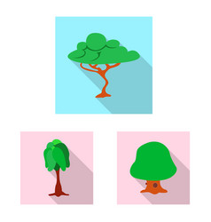 isolated object of tree and nature sign vector image