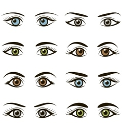 Set of eyes and brows isolated on white background vector