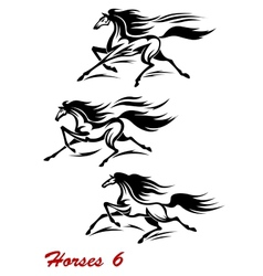 Fast galloping horses and mustangs vector image