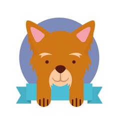 cute dog mascot with ribbon vector image