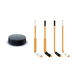 puck and sticks isolated vector image