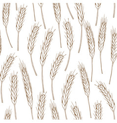 Spikelets of wheat seamless background vector
