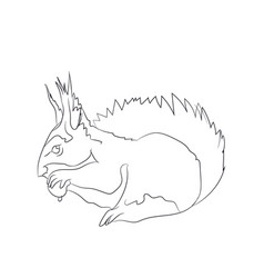 squirrel sits lines vector image