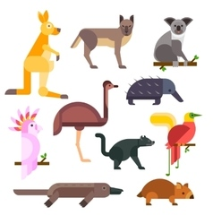 Australia wild animals cartoon collection vector
