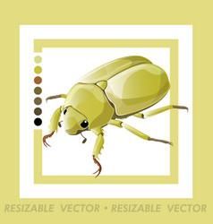 Beetle vector