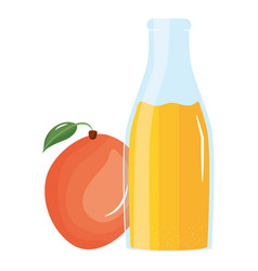 fresh mango juice fruit in botttle vector image