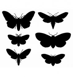 moths vector image