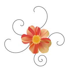 single gerbera flower with black curls red vector image