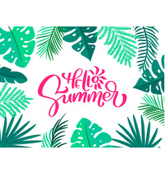 text hello summer in floral leaves frame hand vector image