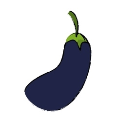 drawing eggplant natural vegetable icon vector image vector image