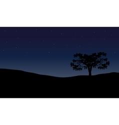 Tree in night scenery vector image