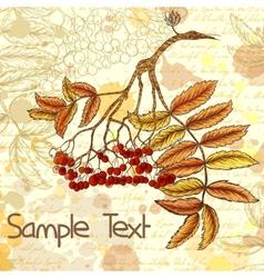 Autumn grungy background with hand-drawn rowan vector
