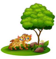 Cartoon adult hyena and cub hyena under a tree on vector