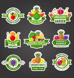 fruit badges natural fresh product logo healthy vector image