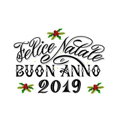 merry christmas and happy new year 2019 greetings vector image