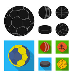 Sport and ball symbol vector