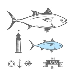 Tuna set vector image