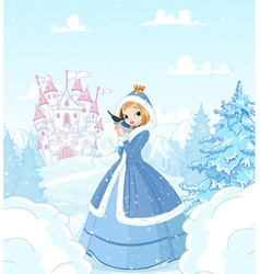 Winter Princess vector image