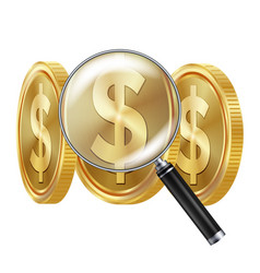 dollar and magnifying glass business vector image