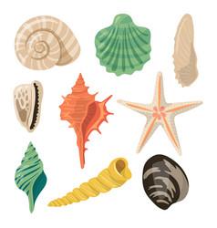 Shells of sea in sand aquatic icons vector