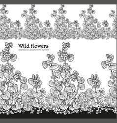 wild flowers field seamless decorative vector image