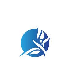 beauty lotus flowers design logo vector image