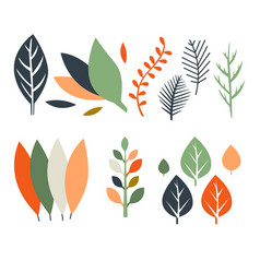 colorful leaves tree collection summer and autumn vector image