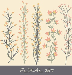 floral set Collection with leaves flowers vector image