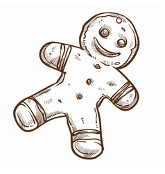 gingerbread man baked cookie from ginger isolated vector image