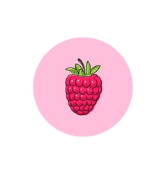 Icon Colorful Raspberries vector image