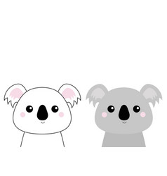 koala bear head face set doodle linear sketch vector image