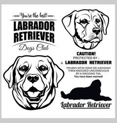 Labrador retriever dog - set on white vector