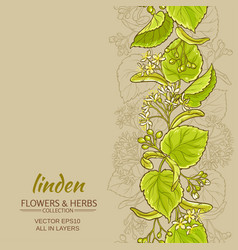 Linden background vector