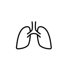 lungs icon on white background vector image