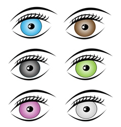 beauty eyes style vector image vector image