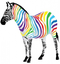 zebra strips of different colors vector image vector image