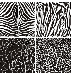 Animal black and white background vector image vector image