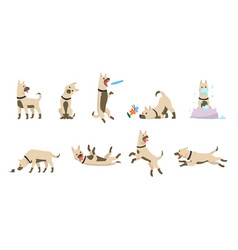 cartoon dog set dogs tricks icons and action vector image