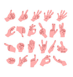cartoon hand arm with different gestures vector image