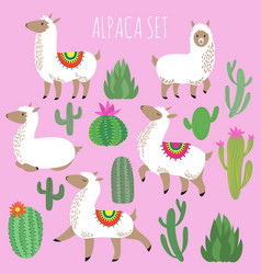 Mexican white alpaca lamas and desert plants vector