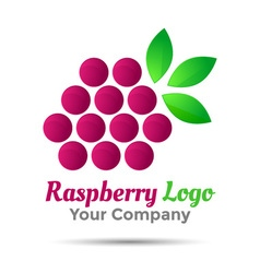 Raspberry logo template Volume Logo Colorful 3d vector image