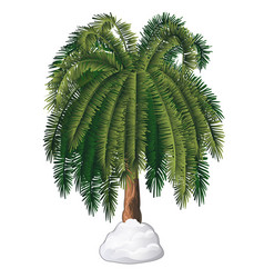 Tropical cartoon palm tree covered with snow vector