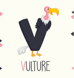 alphabet letter v and vulture vector image