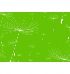 Dandelion negative vector